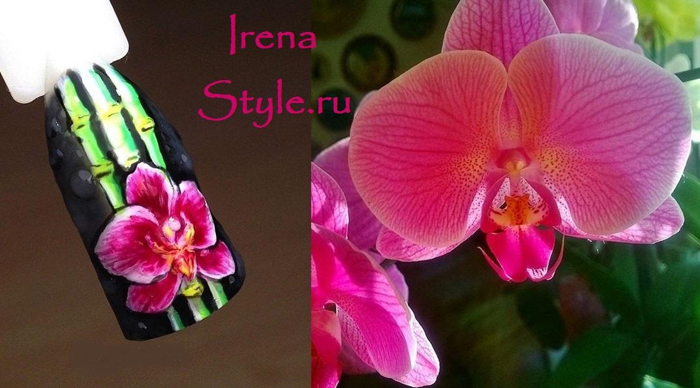 Маникюр с орхидеями фото 2021 весенние идеи варианты