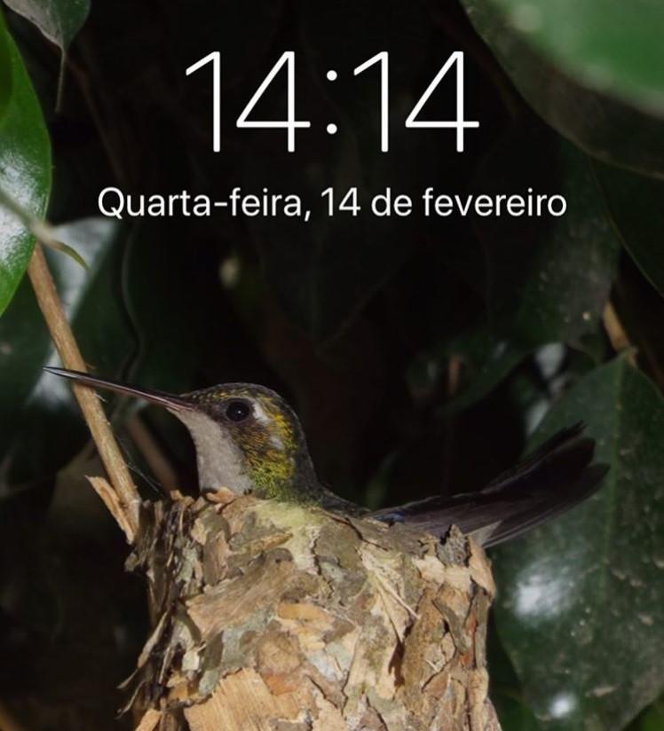 14:14 на часах: что это значит, совпадение цифр, определение