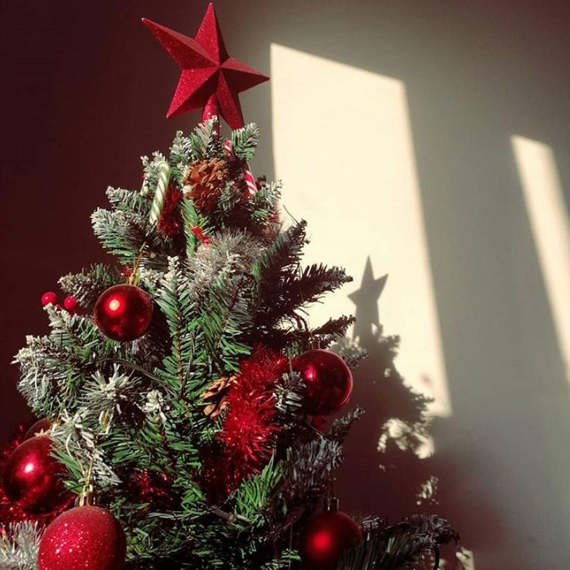 Как украсить елку на Новый год 2020: красивые идеи, 100 фото