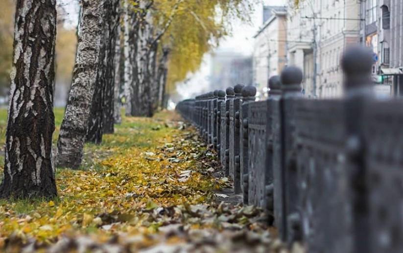 Какая осень будет в Новосибирске в 2019 году? Точный прогноз