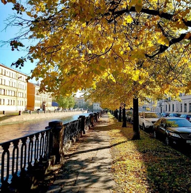 Какой будет осень в Санкт-Петербурге в 2019 году