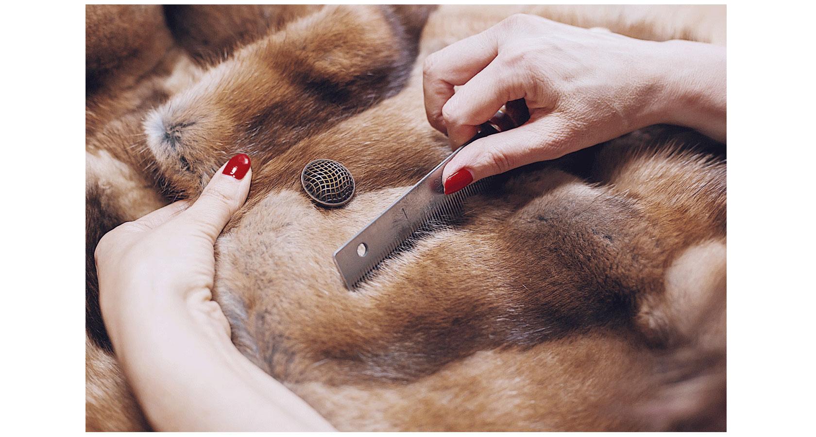 Как выполняют ремонт шубы из норки?