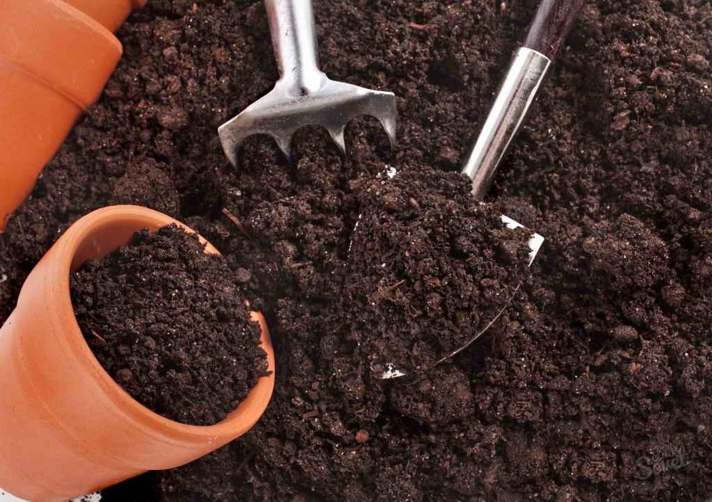 Каким должен быть растительный грунт?